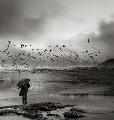 Photographer Veter Peremen :)