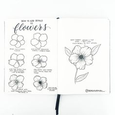 Wish to study to create gorgeous and exquisite flower doodles on your bullet journal layouts? Be taught these wonderful doodle flower patterns and tutorials which can be quite simple. These fairly, step-by-step botanical doodles can[. Easy Flower Drawings, Flower Drawing Tutorials, Flower Sketches, Easy Drawings, Doodle Drawings, Pencil Drawings, Botanical Line Drawing, Floral Drawing, Botanical Drawings