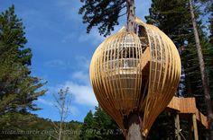 Treehouse - Thiết kế nhà cây độc đáo 10