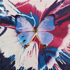 Top Quality Fresh Colors Beauty Abstract Animal Butterfly Paintings For Wall Art Decor Canvas Butterfly Oil Painting For Decor