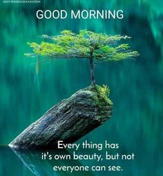 Tuesday Quotes Good Morning, Flirty Good Morning Quotes, Good Morning Friends Quotes, Good Morning Image Quotes, Morning Quotes Images, Good Morning Beautiful Quotes, Good Morning Images Hd, Good Morning Inspirational Quotes, Morning Greetings Quotes