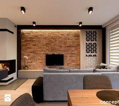 Dom w Rudzie Śląskiej - Realizacja - Średni salon, styl nowoczesny - zdjęcie od Conceptgroup