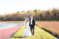 Wedding photos at a cranberry bog!  Perfect for fall!