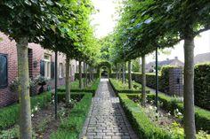 Vrijstaande langgevelboerderij   Aan rustige weg in woonwijk   Steutenweg 5…
