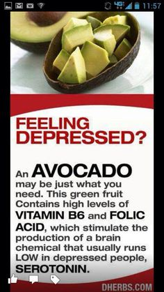 Avacados- I need a ton of these