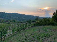 Die Säuren im WEIN Vineyard, Mountains, Nature, Travel, Outdoor, Outdoors, Naturaleza, Viajes, Bergen