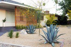 Jardim em local de clima muito seco. Califórnia, USA.