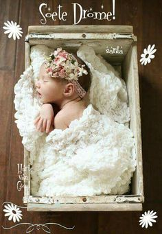 I have to share this precious newborn session with you guys! All five pounds of this baby just melts my heart. Editing newborn sessions al. Baby Poses, Newborn Poses, Newborn Shoot, Newborn Baby Photography, Children Photography, Newborns, Sibling Poses, Photography Ideas, The Babys