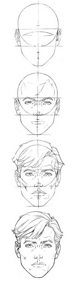 Male Head proportions template/reference