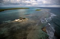 Caye au nord de Turneffe Atoll, District de Belize, Belize