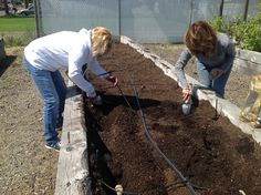 First Planting at the Food Share Garden!