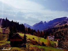 Borsa ( Cascada Caiilor) Mountains, Nature, Travel, Naturaleza, Viajes, Trips, Nature Illustration, Outdoors, Traveling