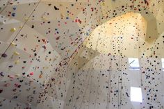 ONL's Climbing Wall System wins the Wood Innovation Award 2012   News   Archinect