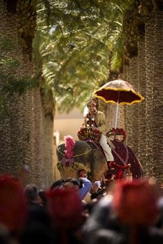 Google Image Result for http://marrymeweddings.in/wpblog/wp-content/uploads/2012/04/elephant-at-baraat-of-Indian-wedding.jpeg