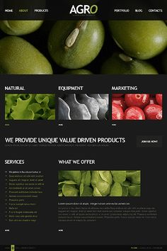 Designed by TemplateMonster.com (USD $67). Setup by Qarve.com (SGD $2,200 - $3,400). The Drupal 7 CMS is print and SEO friendly. Package includes hosting, maintenance, security, contact form, color design and 4 custom banners. Web 2.0, social media or eCommerce add-ons available. Watch demo: www.youtube.com/qarvedotcom or follow us: www.facebook.com/Qarve #drupal #cms #web #design #seo #ecommerce #socialmedia