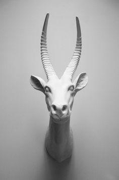 Killimanjaro Antelope Head Faux White Antelope by hodihomedecor, $172.00