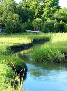 The Marsh, Tybee Island, Georgia You can see forever from Tybee and River's End Campground. http://www.riversendcampground.com