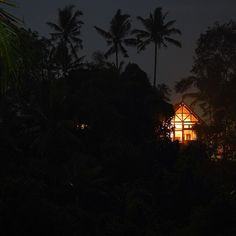 You can find me in the middle of the jungle🌙🏠🌴👀 #little #house #jungle #palmtrees #night  #light #stars #sky #moon #nightlovers #nature #naturelovers #nowhere #bali #indonesia #travel #awesome #onlyme #silent #podróże #instatravel #photo #photographer #adventure #wonderfulplanet #lpfanphoto