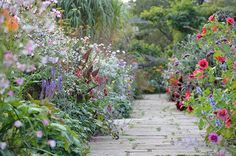 To create the quintessential cottage garden, plant flowers at the edge of garden beds and allow them to spill over onto paths. Bonus points for fragrant flowers that brush against visitors' ankles as they pass by.
