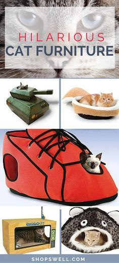 Even cats get bored. These are some fun pieces of furniture that I think any cat owner would appreciate to help keep their cats entertained and from scratching up the real furniture around the house.