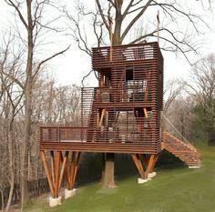 cabane design dans les arbres avec une terrasse en bois