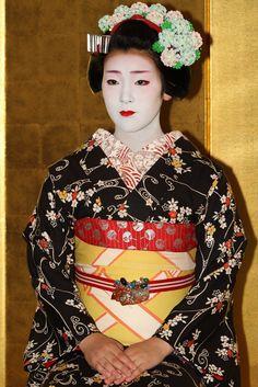 Kyoto Miyagawa-cho Maiko : Fukusato Located : Miyako-Messe in Higashiyama Okazaki area, Kyoto.