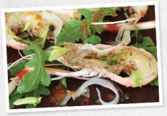 Seared Scampi with Wasabi Salad, Celery leaf and Lime Chilli dressing - Tripod Farmers Group