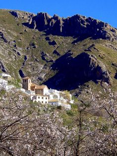 Alpujarras : Timar from GR7 near Berchules (Peter Connolly)