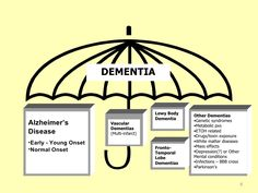 Teepa Snow, Dementia Expert, on understanding Alzheimers patient behaviors. Dementia is an umbrella that covers 80-90 different diagnosis.