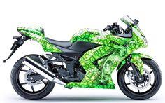 Cool Motorcycle Paint Jobs | Paint Job's : KawiForums.com Kawasaki Forums: Kawasaki motorcycle ...