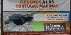 www.saboravallarta.com.mx - Noticias Puerto Vallarta Radio y Television Online