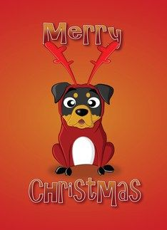 Rottweiler - reindeer costume Greeting Card  #Card #Costume #Greeting #PetHalloweenCostume #Reindeer #Rottweiler Halloween Spirit