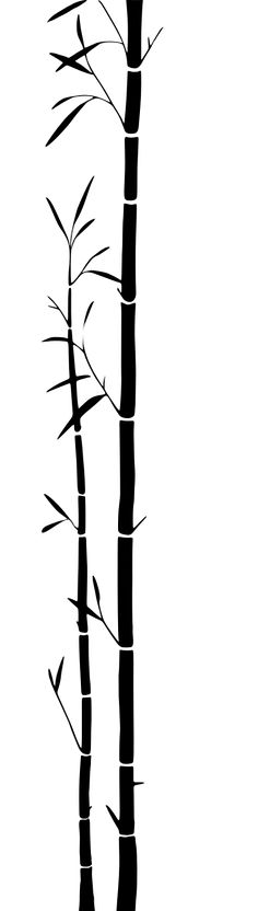 Bamboo Silhouette vector illustration.