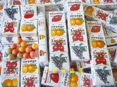 水果口香糖