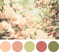 Paleta de Cores...a good blush color