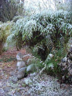 Hermine Paulic: Sitzender Buddha beim Teich - Winter 15/16