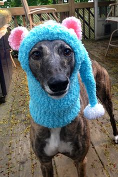 Unicorn Hat / Snood for a Greyhound Other, The ojays and Halloween