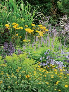 Cottage Abundance : Flower : Garden Galleries : HGTV - Home & Garden Television