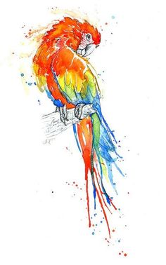 Parrot Series - I - Scarlet Macaw Art Print by amyholliday Watercolor Bird, Watercolor Animals, Watercolor Paintings, Bird Paintings, Watercolors, Parrot Drawing, Bird Drawings, Art And Illustration, Bird Art