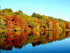 images of fall - Google Search