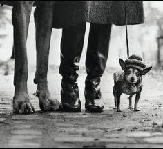 Elliott Erwitt, New York (Dog Legs New York City), 1974. © Elliott Erwitt/Magnum Photos