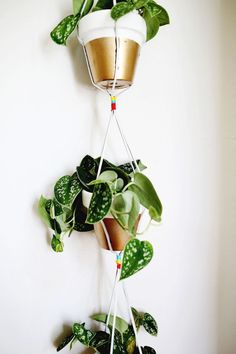 #DIY Gold Dipped Hanging Planters