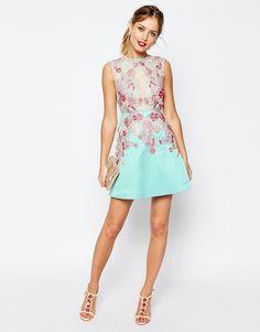 Image 4 ofASOS SALON Applique Lace Sheer Aline Mini Dress