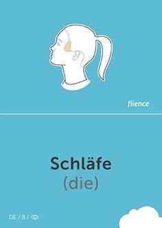 Schläfe #CardFly #flience #human #german #education #flashcard #language