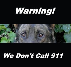 "scary beware of dog signs | ... ""BEWARE OF DOG"" signs... - Page 9 - German Shepherd Dog Forums"