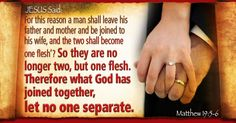Matthew Therefore what God has joined together, let no one separate. Biblical Quotes, Jesus Quotes, Daily Pictures, Separate, Two By Two, Marriage, Father, Let It Be, God