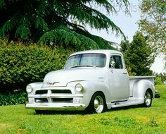 AUT 14 RK1054 05 - 1954 Chevy 1/2 Ton 3100 Custom Silver 3/4 Front View On Grass By Trees - Kimballstock
