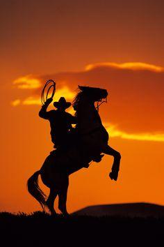 cowboys - Google Search
