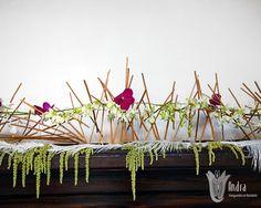 Estructura floral  orquídea phalaenopsis y dendrobium.