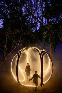 The Search of The Glow/ Serendipity Studio on Behance Lightroom, Adobe Photoshop, Adobe Premiere Pro, Landscape Architecture, Landscape Design, Boutique Bio, Misty Forest, Theme Background, Backyard Lighting